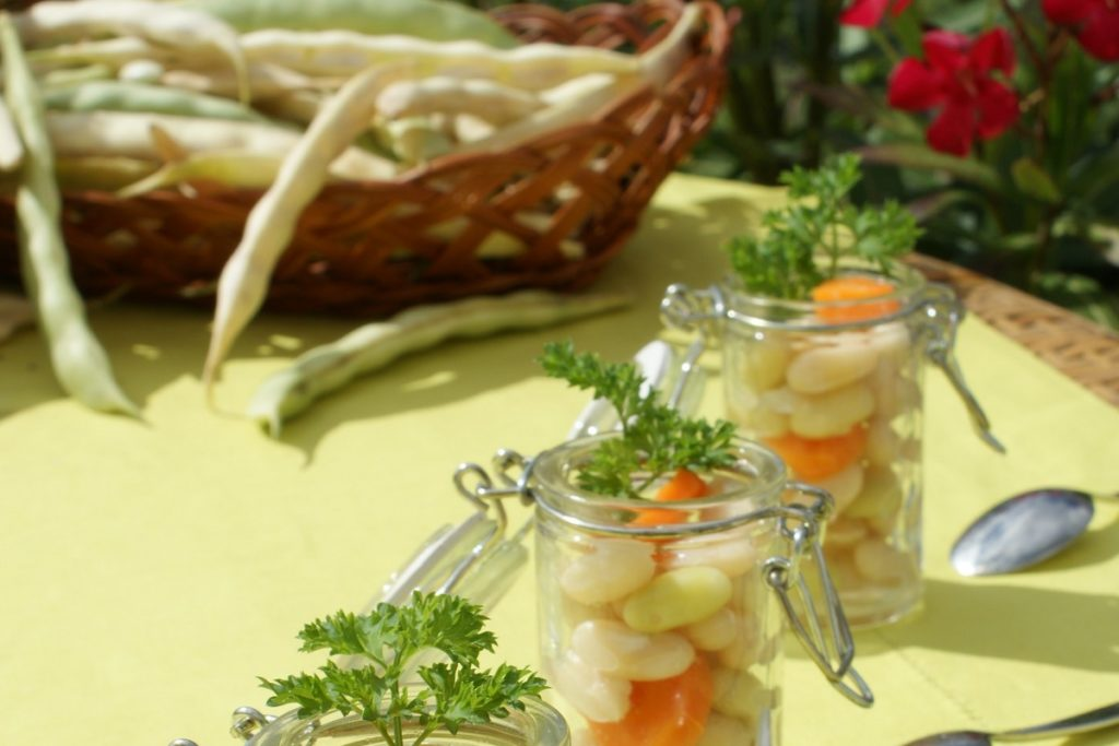 gousse-mojette-vendee-recolte-saison