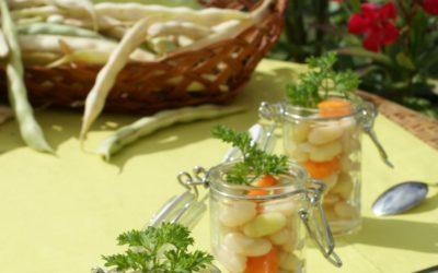 La récolte de la Mogette de Vendée