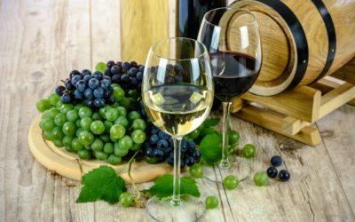 Le bon accord vin / mogettes pour nos recettes d'hiver